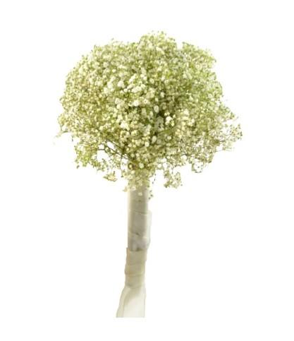 Bouquet Zouk